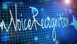 Nice Systems: Debunking Voice Recognition Myths